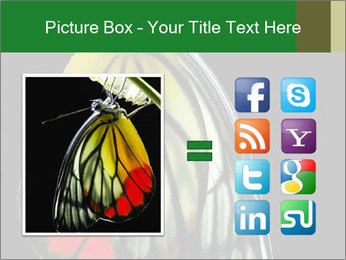 0000072697 PowerPoint Template - Slide 21