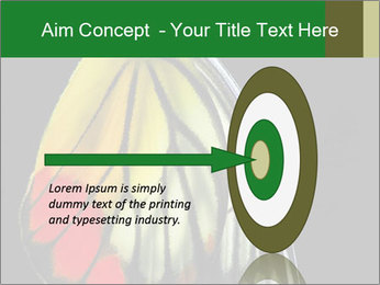 0000072697 PowerPoint Template - Slide 83