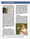0000072713 Word Template - Page 3