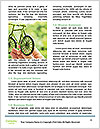 0000072718 Word Templates - Page 4