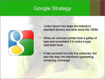 0000072722 PowerPoint Template - Slide 10