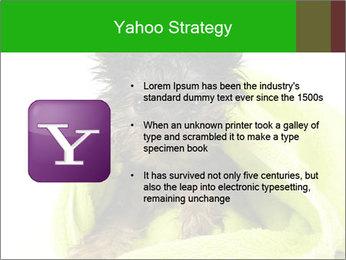 0000072722 PowerPoint Template - Slide 11
