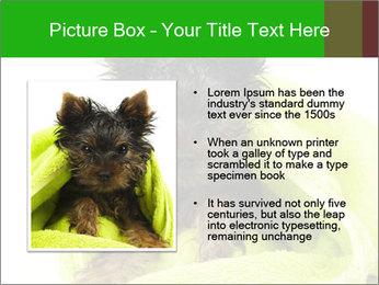0000072722 PowerPoint Template - Slide 13