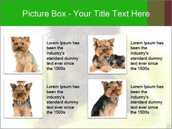 0000072722 PowerPoint Template - Slide 14