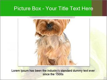 0000072722 PowerPoint Template - Slide 15