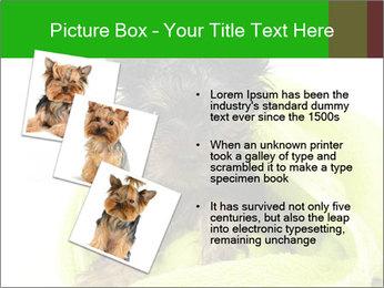 0000072722 PowerPoint Template - Slide 17