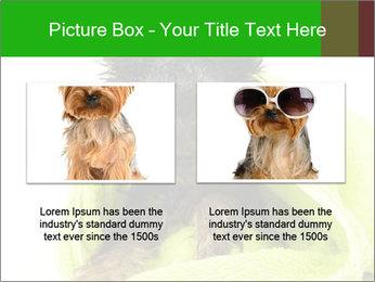 0000072722 PowerPoint Template - Slide 18