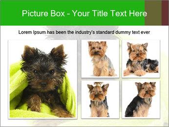 0000072722 PowerPoint Template - Slide 19