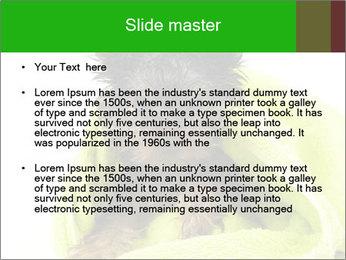 0000072722 PowerPoint Template - Slide 2