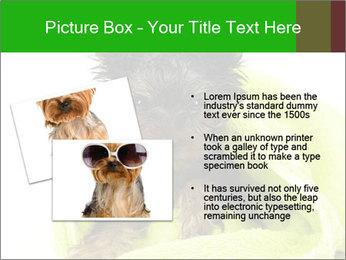 0000072722 PowerPoint Template - Slide 20