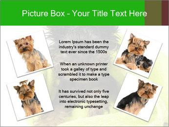 0000072722 PowerPoint Template - Slide 24