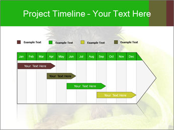 0000072722 PowerPoint Template - Slide 25