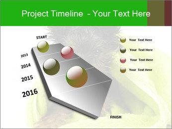 0000072722 PowerPoint Template - Slide 26