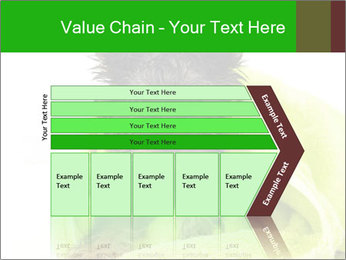 0000072722 PowerPoint Template - Slide 27