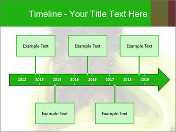 0000072722 PowerPoint Template - Slide 28