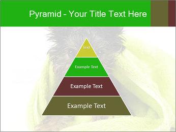 0000072722 PowerPoint Template - Slide 30
