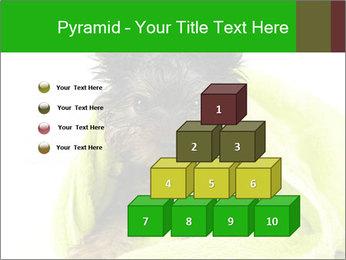 0000072722 PowerPoint Template - Slide 31
