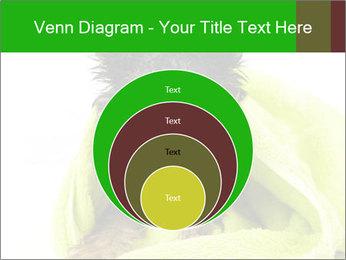 0000072722 PowerPoint Template - Slide 34