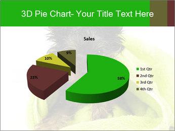 0000072722 PowerPoint Template - Slide 35