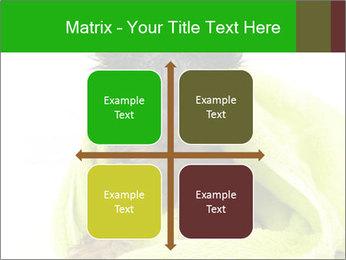 0000072722 PowerPoint Template - Slide 37