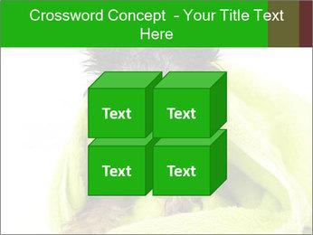 0000072722 PowerPoint Template - Slide 39