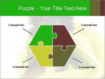 0000072722 PowerPoint Template - Slide 40