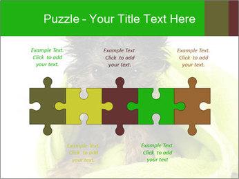 0000072722 PowerPoint Template - Slide 41