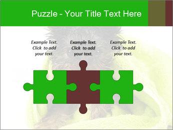 0000072722 PowerPoint Template - Slide 42