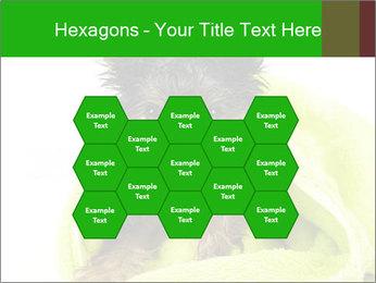0000072722 PowerPoint Template - Slide 44
