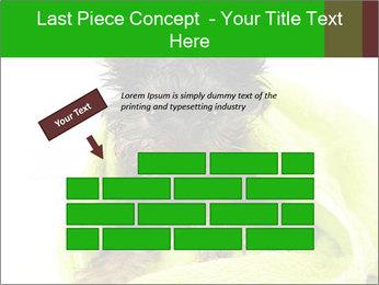 0000072722 PowerPoint Template - Slide 46