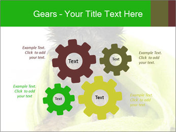 0000072722 PowerPoint Template - Slide 47
