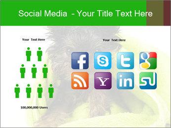 0000072722 PowerPoint Template - Slide 5
