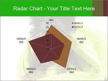 0000072722 PowerPoint Template - Slide 51