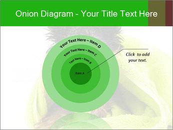 0000072722 PowerPoint Template - Slide 61