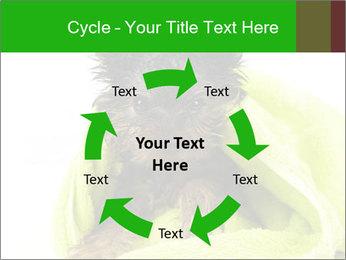 0000072722 PowerPoint Template - Slide 62