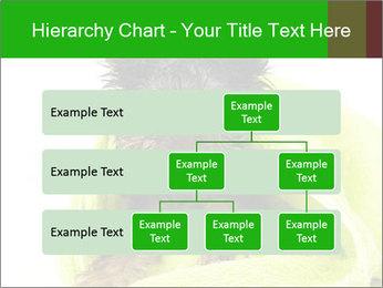 0000072722 PowerPoint Template - Slide 67