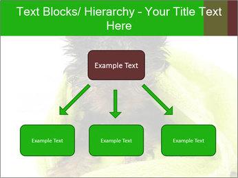 0000072722 PowerPoint Template - Slide 69