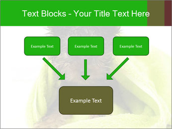 0000072722 PowerPoint Template - Slide 70