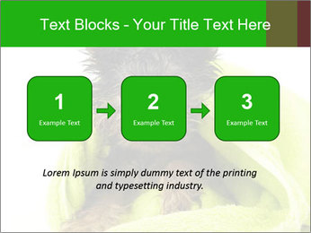 0000072722 PowerPoint Template - Slide 71