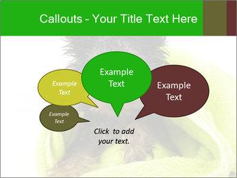 0000072722 PowerPoint Template - Slide 73