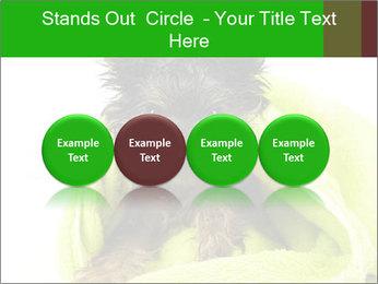 0000072722 PowerPoint Template - Slide 76
