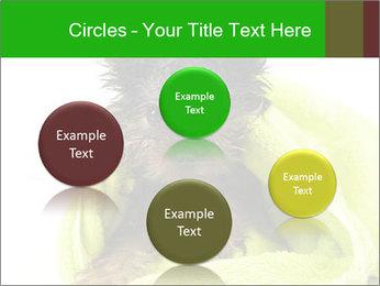 0000072722 PowerPoint Template - Slide 77