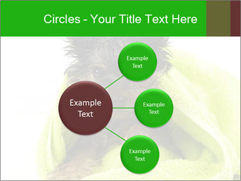 0000072722 PowerPoint Template - Slide 79
