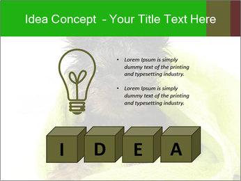 0000072722 PowerPoint Template - Slide 80