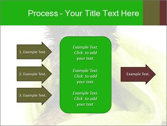 0000072722 PowerPoint Template - Slide 85