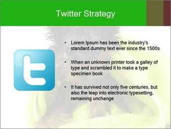 0000072722 PowerPoint Template - Slide 9