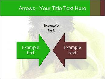 0000072722 PowerPoint Template - Slide 90