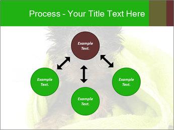 0000072722 PowerPoint Template - Slide 91