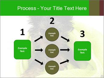 0000072722 PowerPoint Template - Slide 92