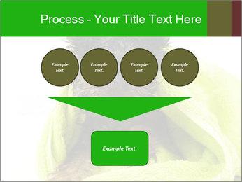 0000072722 PowerPoint Template - Slide 93
